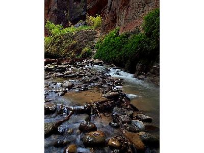 Photo Zion Narrows 15 Travel