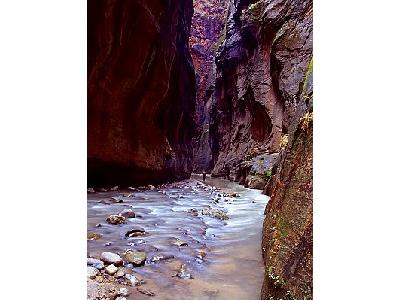 Photo Zion Narrows 4 Travel
