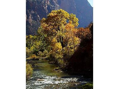 Photo Zion National Park 3 Travel