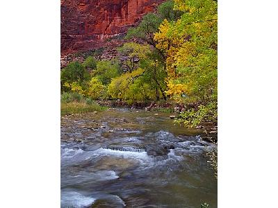 Photo Zion.canyon Travel