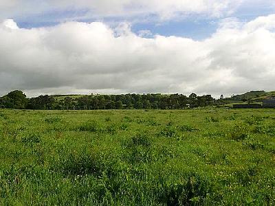 Photo Green 2 Travel