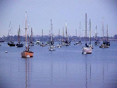Photo Sailboats Vehicle