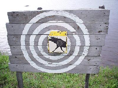 Photo Elk Target Other