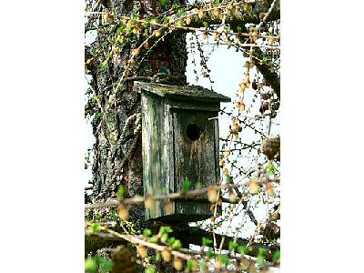Photo Old Wooden Nesting Box Other