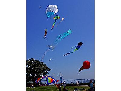 Photo Kites Flying Other