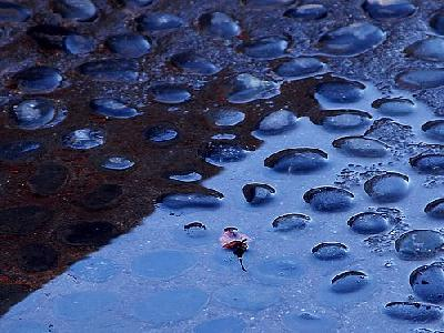 Photo Rain Puddle Other