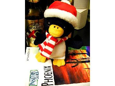 Photo Penguin 4 Other