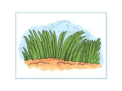 Logo Nature 109 Animated