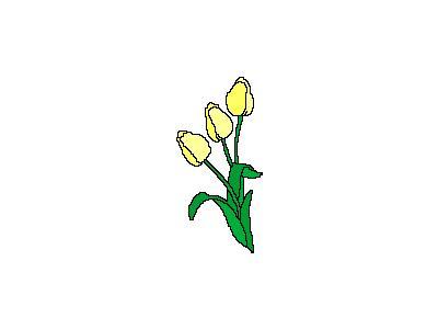 Logo Nature 095 Animated