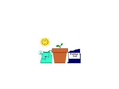 Logo Nature 110 Animated