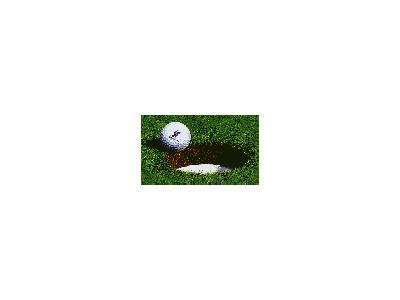 Logo Sports Golf 002 Animated