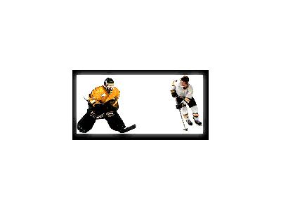 Logo Sports Hockey 003 Animated