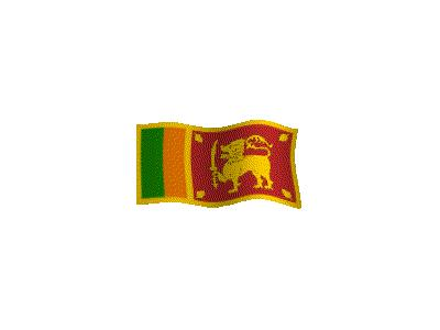 Logo Flags Plain 193 Color