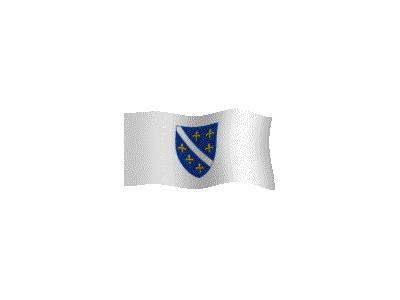 Logo Flags Plain 055 Color