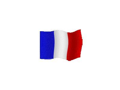 Logo Flags Plain 095 Color