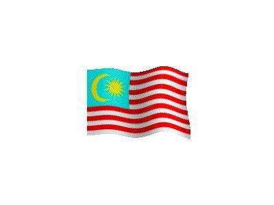 Logo Flags Plain 140 Color