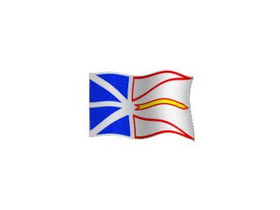 Logo Flags Plain 157 Color