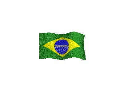 Logo Flags Plain 057 Color