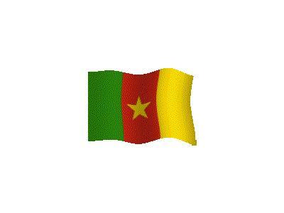 Logo Flags Plain 065 Color