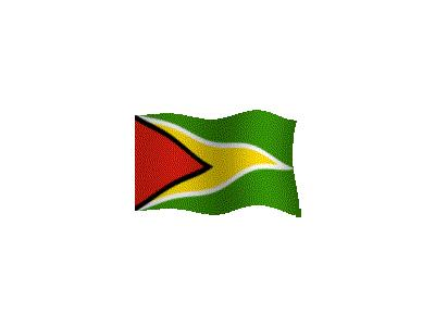 Logo Flags Plain 106 Color