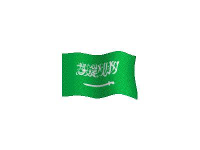 Logo Flags Plain 183 Color