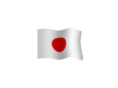 Logo Flags Plain 120 Color