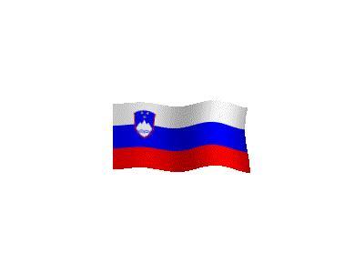 Logo Flags Plain 187 Color