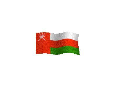 Logo Flags Plain 165 Color