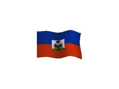 Logo Flags Plain 108 Color