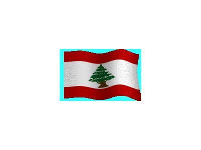 Logo Flags Plain 129 Color