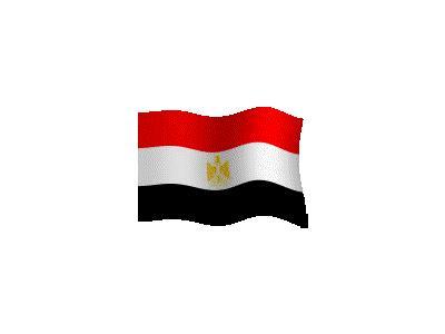 Logo Flags Plain 082 Color