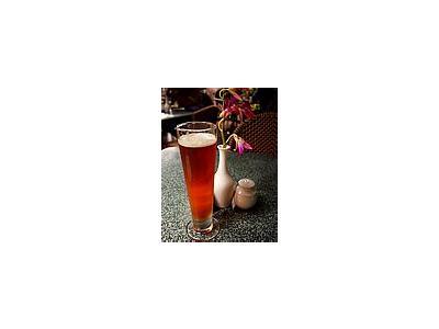 Photo Small Pilsner Beer Drink