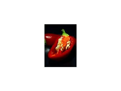 Photo Small Chilli Food