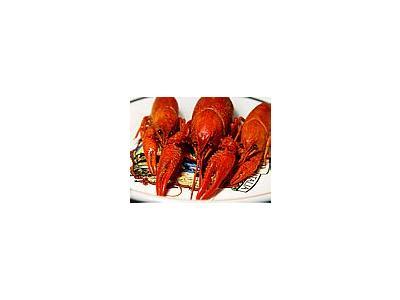 Photo Small Crawfish 3 Food
