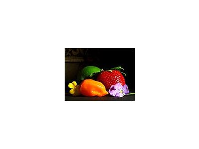 Photo Small Fruit Still Life Food