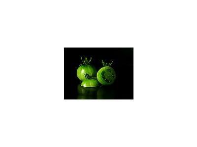 Photo Small Green Tomatoes Food