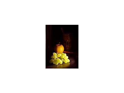 Photo Small Wine Food