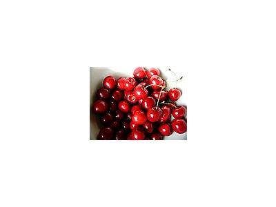 Photo Small Cherry 11 Food