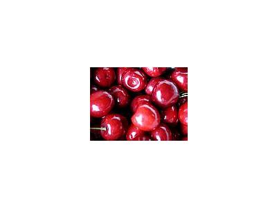 Photo Small Cherry 2 Food