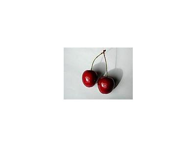 Photo Small Cherry 20 Food