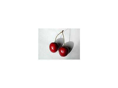 Photo Small Cherry 21 Food