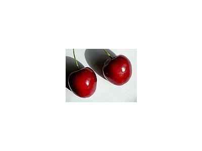 Photo Small Cherry 22 Food