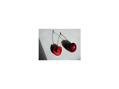 Photo Small Cherry 24 Food