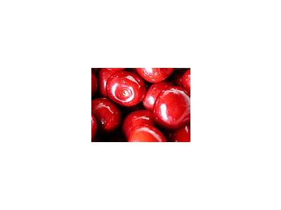 Photo Small Cherry 4 Food