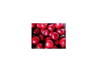 Photo Small Cherry 6 Food