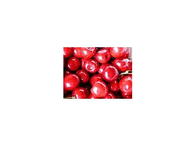 Photo Small Cherry 8 Food