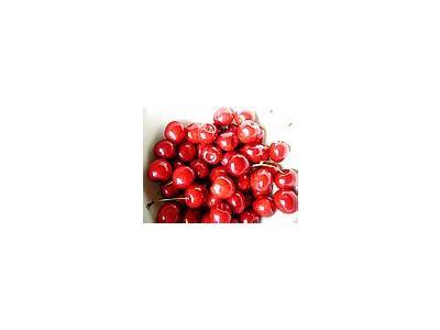 Photo Small Cherry 9 Food