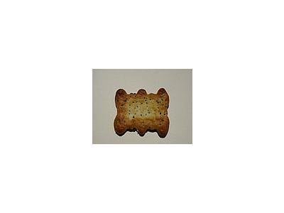 Photo Small Cracker 3 Food