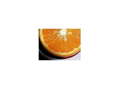 Photo Small Orange 6 Food
