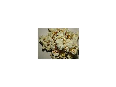 Photo Small Popcorn 1 Food